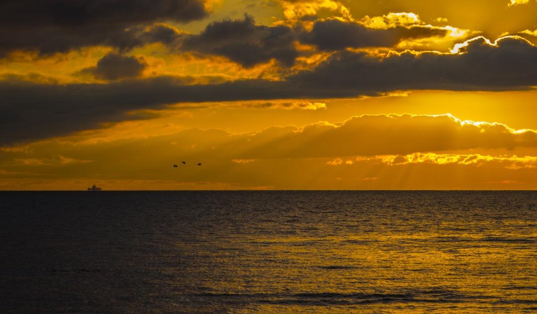stock photos free  of Yellow Sky on Olivos Port sunset