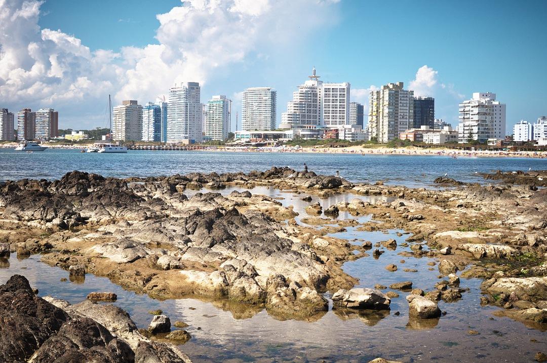 stock photos free  of Punta del Este city View