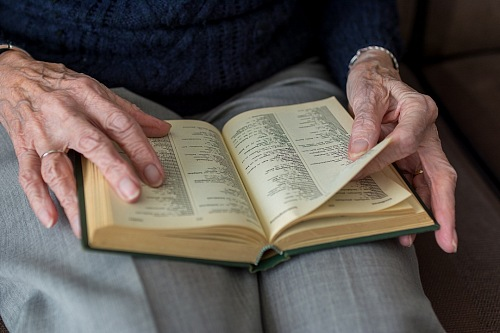 free for commercial use Elderly woman reading a book images