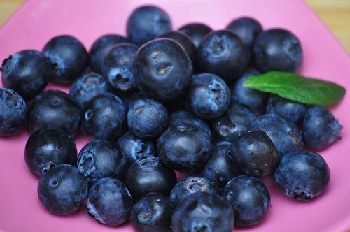 blueberries closeup macro