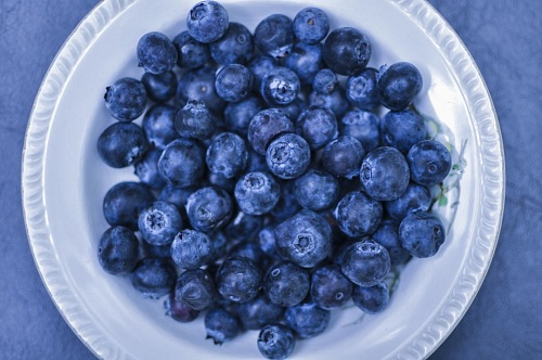 photo Blueberry background. Ripe and juicy fresh picked blueberries closeup free for commercial use images