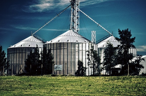Silos in a field. Storage of agricultural production